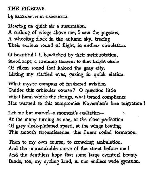 Profile-E. Campbell p 4