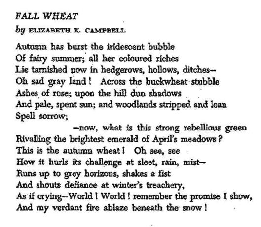 Profile-E. Campbell p 28